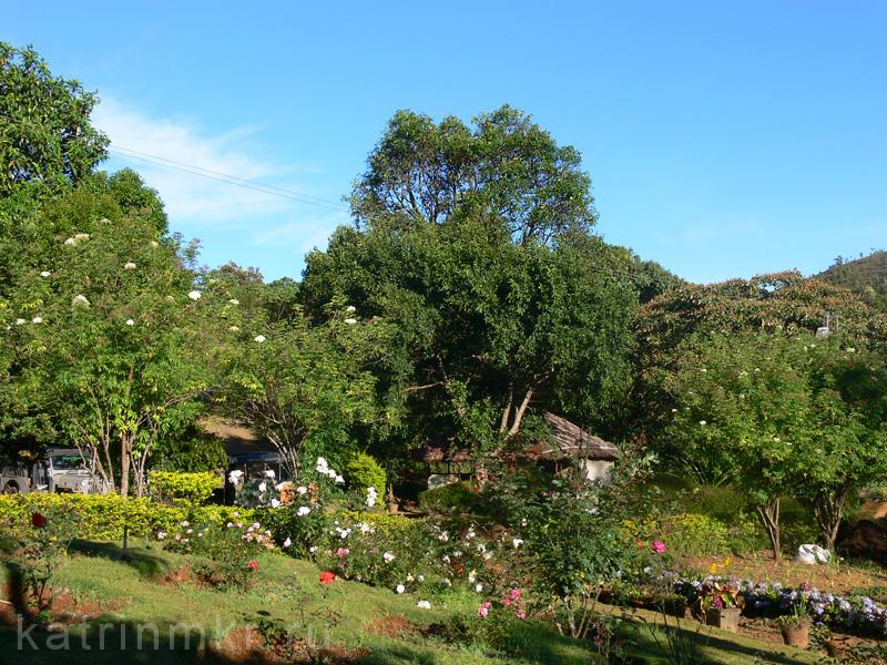Национальный парк Перияр. Сад возле главного корпуса