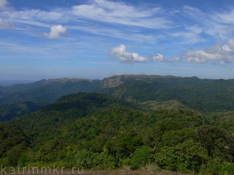 Национальный парк Перияр.