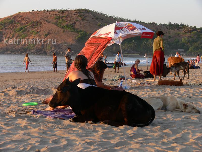 Kudle beach (пляж Кудли)
