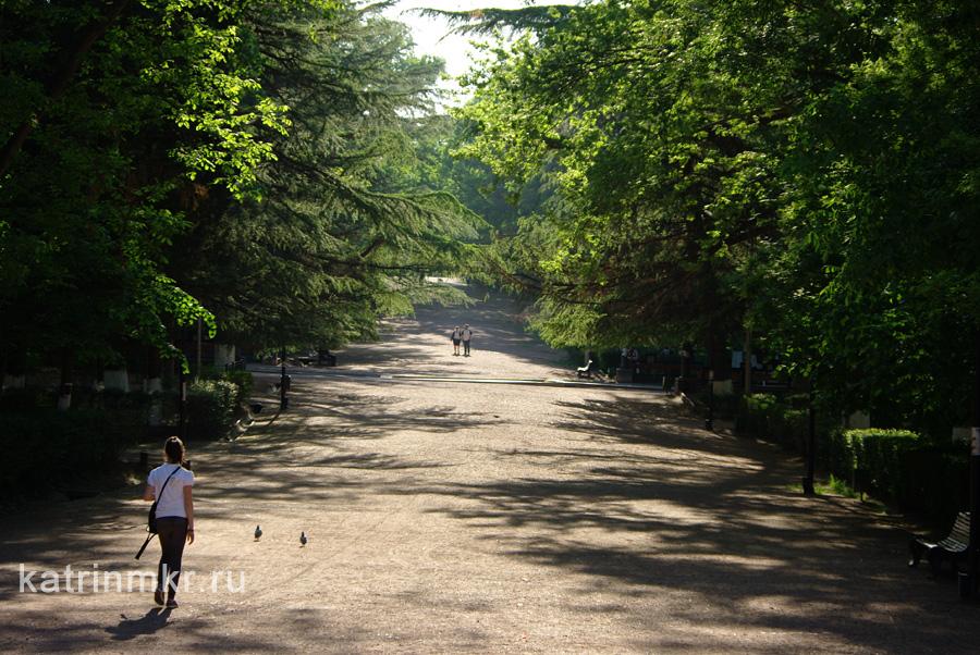 Тбилиси. Парк Ваке. Аллеи.